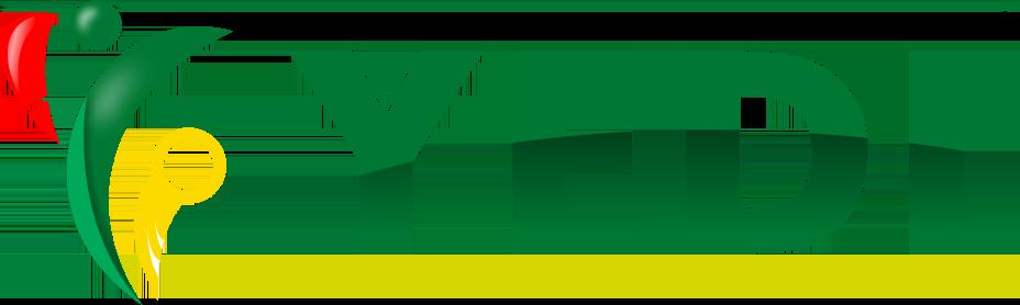 YEDI Logo